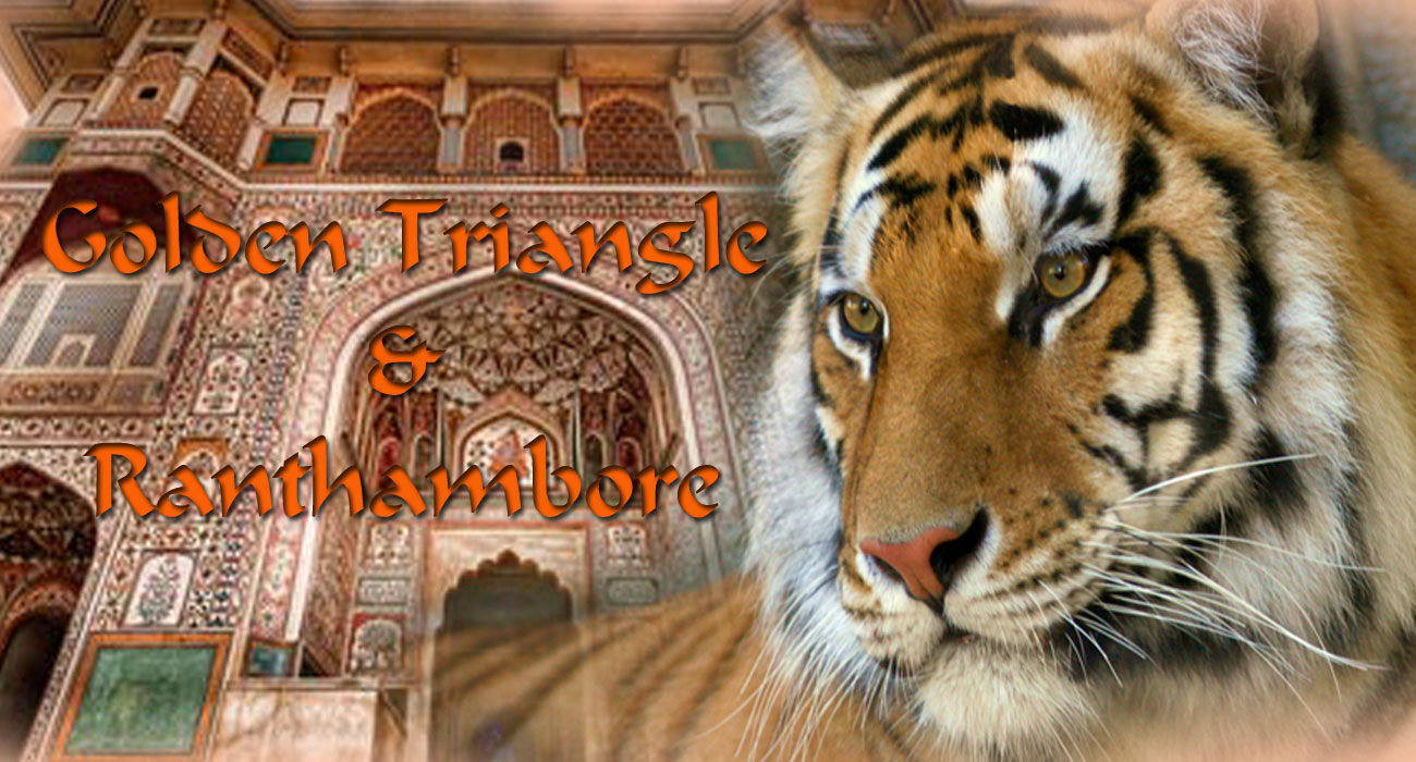 GOLDEN TRIANGLE TOUR WITH TIGERS